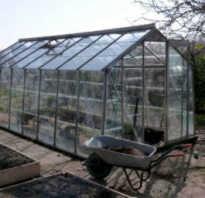 Как подготовить парник к посадке помидор. Подготовка теплицы под посадку помидоров весной