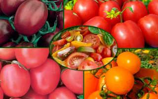 Де барао выращивание. Характеристика и описание 7 сортов помидор Де Барао