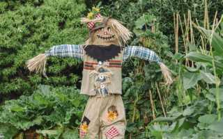 Грим пугало огородное для детского сада. Пугало в сад: как сделать отличное чучело своими руками. 65 фото креативных идей