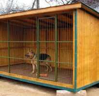 Как построить вольер для большой собаки ростов. Домашний вольер для собаки своими руками ростов – Вольер для собак в Ростове-на-Дону
