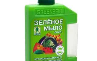 Зеленое мыло инструкция. Как использовать зеленое мыло для защиты растений от болезней и вредителей (инструкция)