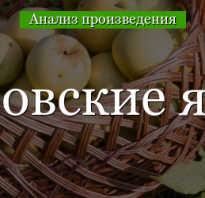 Антоновские яблоки фото. Почему антоновские яблоки так называются?