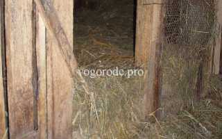 Какое сено лучше для коз. Заготовка сена на зиму для козы: сколько нужно и как правильно кормить
