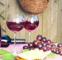 Виноград лидия вино в домашних условиях. Рецепты вина из винограда Лидия в домашних условиях