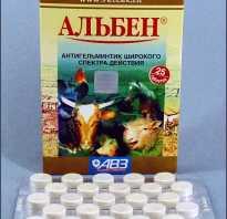 Как давать свиньям альбен. «Альбен» и другие лекарства от глистов для свиней