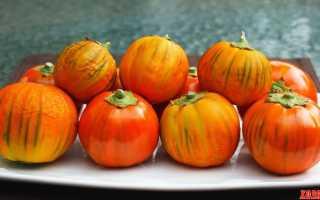 Баклажан японский красный. Красные баклажаны, черные помидоры и перцы в виде змей