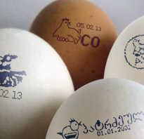 Вес яйца 1 категории. Куриное яйцо: сколько оно весит в разном соотношении?