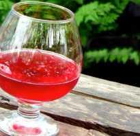 Вино из замороженной смородины. Как приготовить вино из мороженых ягод дома