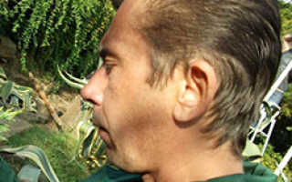 Борьба с вредителями смородины весной. Обработка смородины весной от болезней и вредителей