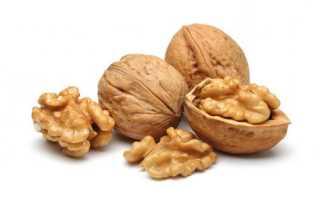 Где растут орехи. Как растут орехи?