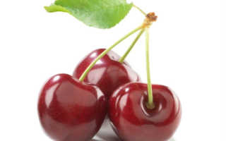 Вишнёвые ветки польза. Особенности применения ветвей вишни
