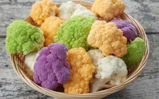 Как сажать цветную капусту в грунт. Выращивание цветной капусты в открытом грунте