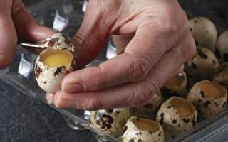 Как разбить перепелиное яйцо видео. Как разбить перепелиное яйцо — быстро и правильно
