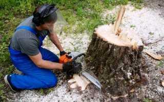 Как корчевать деревья на участке вручную. Как выкорчевать деревья на участке своими руками