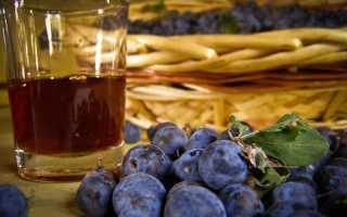 Вино сливовое фото. Рецепт приготовления домашнего сливового вина