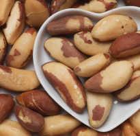 Бразильский орех норма в день. Бразильский орех — чем полезен
