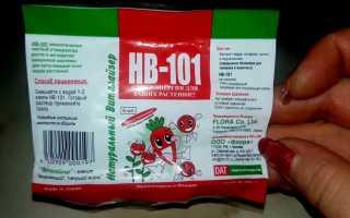 Hb 101 стимулятор роста инструкция. Препарат НВ 101: инструкция по применению и отзывы