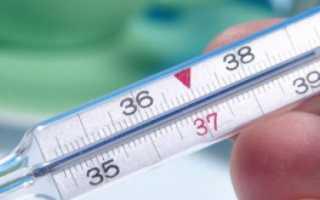 Какая температура у коровы нормальная. Температура КРС: причины повышения и способы приведения в норму
