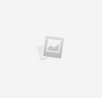 Зеленушки серушки. Рецепты приготовления грибов серушек